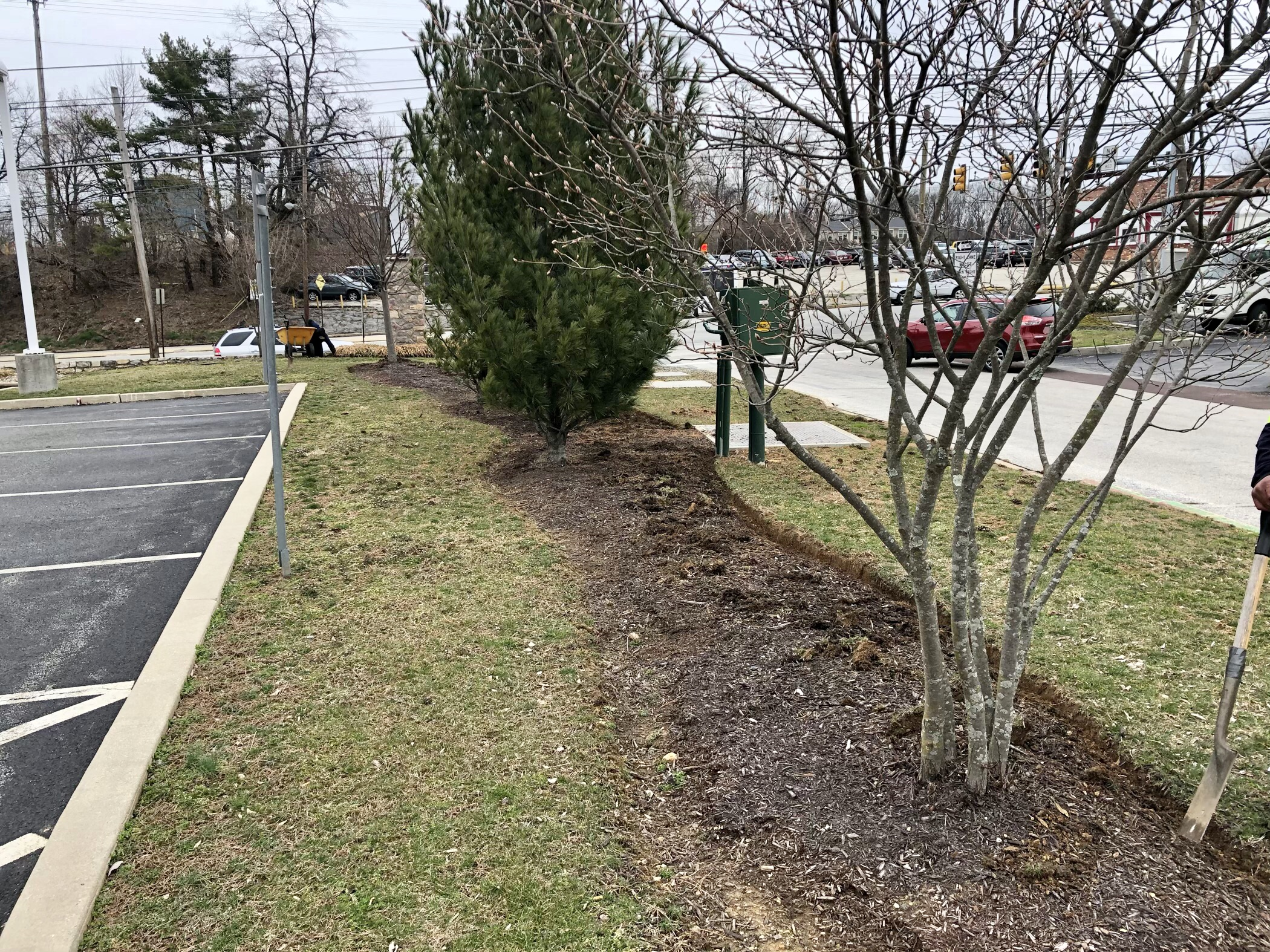 Exton, PA Commercial Tree Services