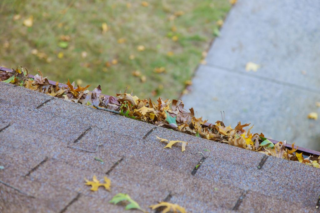 Gutter Cleaning Services in Downingtown, PA