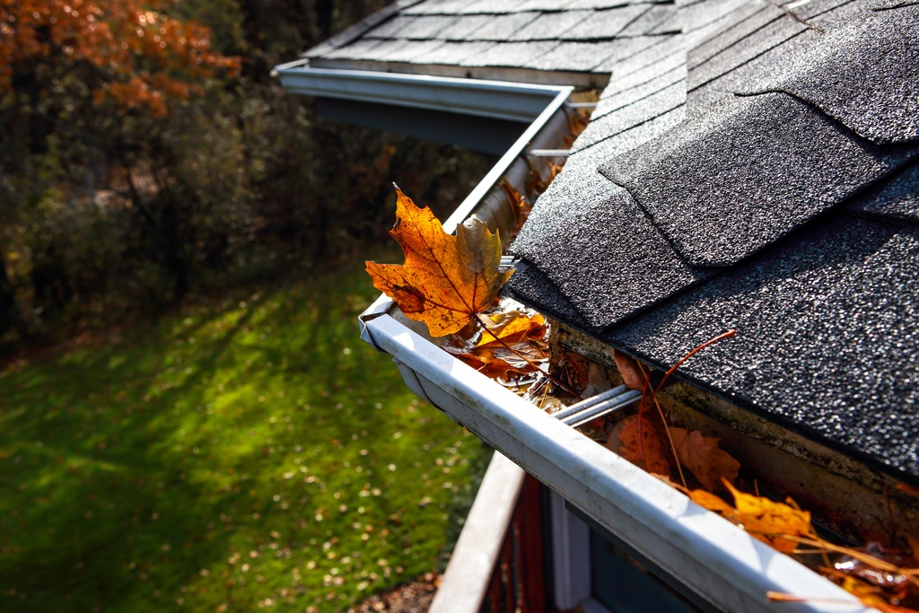 Exton, PA Gutter Cleaning Company